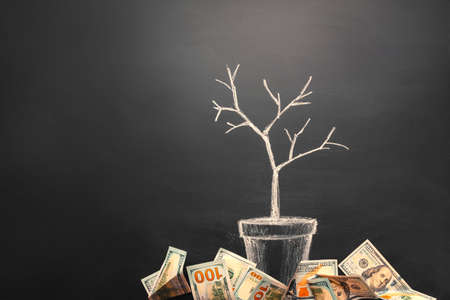 Money tree made by us dollar bills. Business, saving, growth, economic concept. Investors strategy, funding symbol. Copy space.