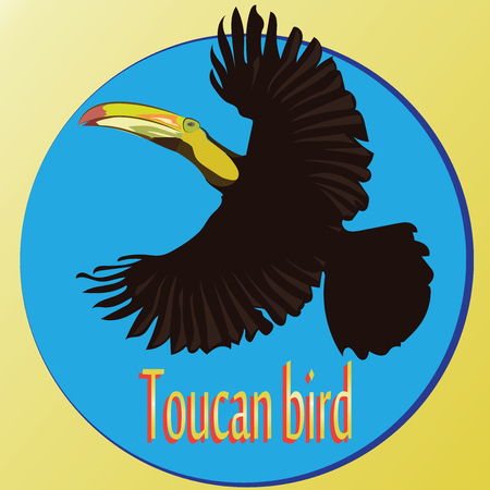 Flying Toucan. Blue circle.The nature of the tropics. An exotic bird. Design for logo, banner, poster, books, dishes, printing on fabric or paper.