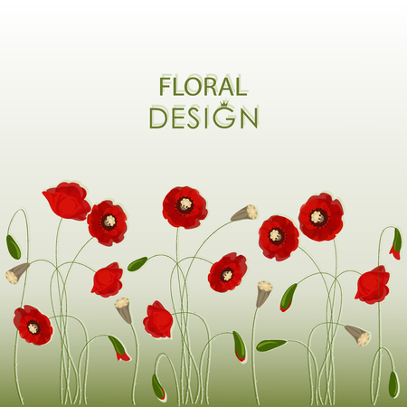 Poppy field. Floral design. Image on a gradient background. Design for a postcard, poster, message with space for text.