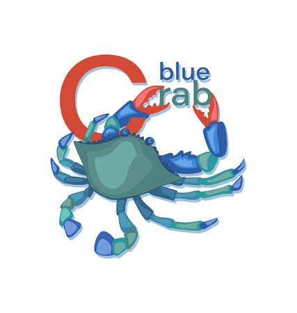 Blue Crab. Sea crab with letters. Seafood. Vector illustration with inscription. Isolated image on white background. Design for menus, cookbooks, posters, banners. Иллюстрация