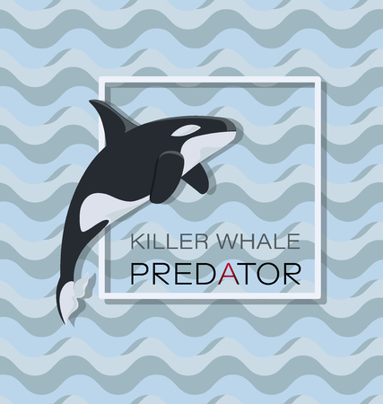 Large toothed whale. Killer whale. Poster. For a thematic site, a scuba club.