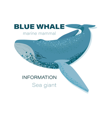 BLUE WHALE. Marine mammal. Emblem Design for textiles, thematic site, diving club and spearfishing.