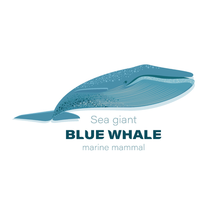 Giant. BLUE WHALE. Marine mammal. Emblem Design for textiles, themed site, diving club and underwater hunting. Иллюстрация