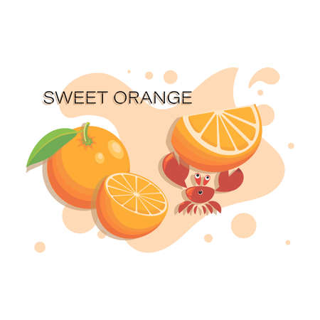 SWEET ORANGE. Tropical fruits, cute crab with slice of ripe orange. Fresh fruits, red crab
