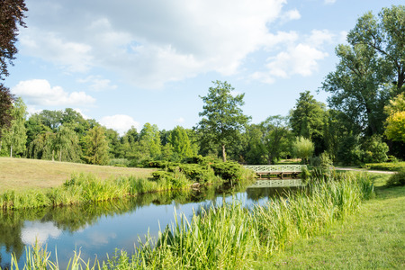 water's edge: Landscape with trees and grass, reflecting in the water, Potsdam, Germany