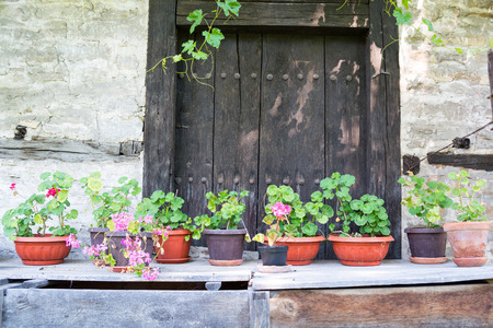 Flower pots in an old backyard, Tryavna, Bulgaria Stock Photo