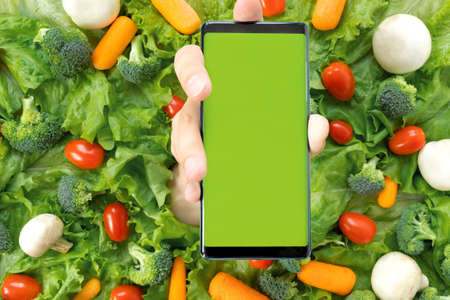 Online order, home delivery of food, groceries from grocery store through mobile application on smart phone. Vegetables, lettuce, carrots, cherry tomatoes, mushrooms. Vegetarian, organic, healthy food.