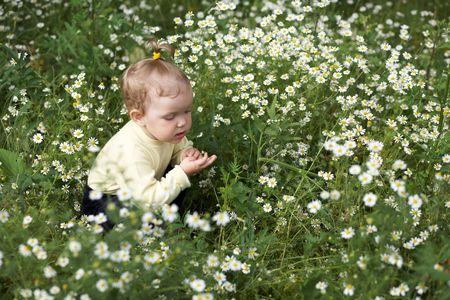 Bambina tra un campo con fiori bianchi  Archivio Fotografico - 3285082
