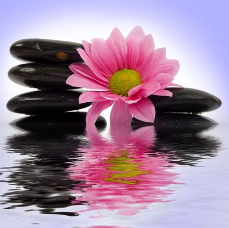clearness: An image of stack of stone with flower in water