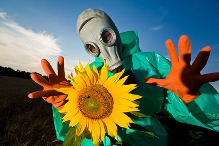 biochemical: An image of man in a respirator on sunflower field