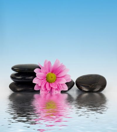 clearness: An image of row of stones with flower in water Stock Photo