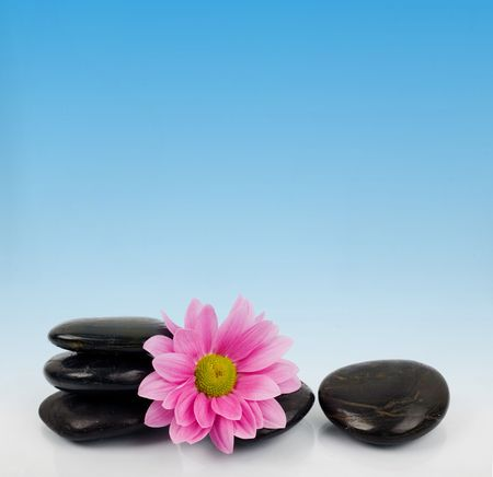 clearness: An image of row of stones with flower on blue background