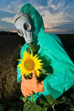 Man in a respirator on sunflower field photo