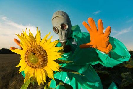 paranoia: L'uomo in un respiratore sul campo di girasole