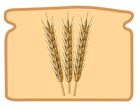 Stock photo: an image of three ripe wheat ears Vector
