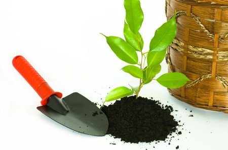 Stock photo: an image of a garden shovel, ground with plant and pot Stock Photo - 4586794