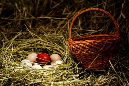 Several fresh eggs and  Easter  egg  in a  nest Stock Photo - 5457198