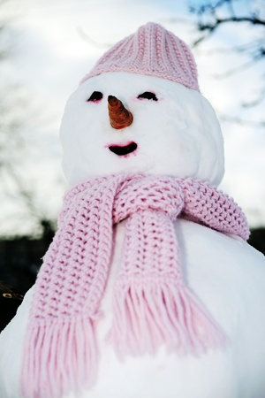 Close up view of perfect snowman in pink photo