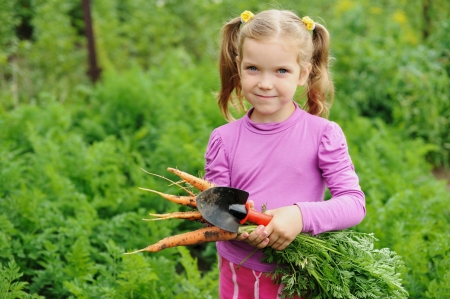 A nice little girl working in a kitchen-garden photo