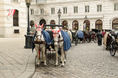 blinder: An image of carriages in Vienna