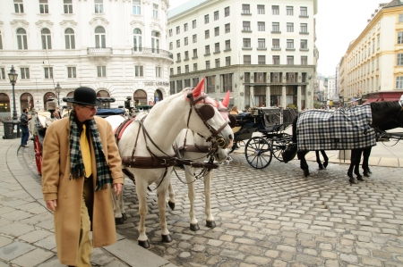 blinder: Carriages with horses in the street of Vienna