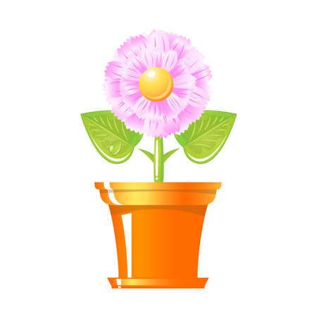 An illustration of growing plant with pink flower in pot. Vector