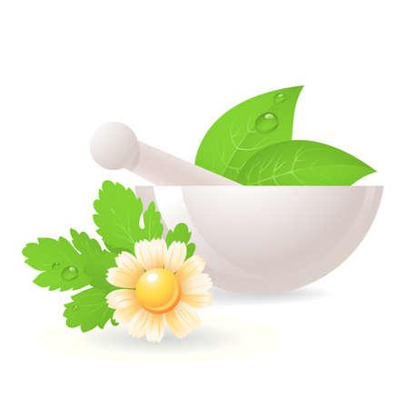 farmacia: Mortaio con erbe e camomilla, medicina alternativa.