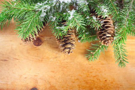 Branch of Christmas on wooden background photo