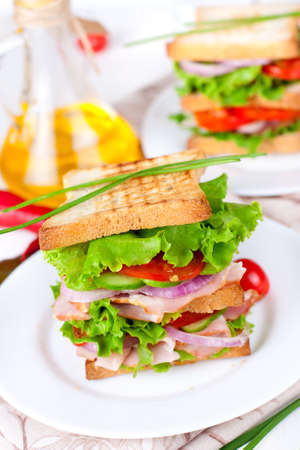 Great sandwich for breakfast 免版税图像