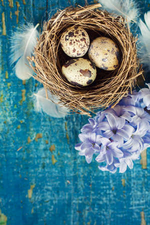 Quail eggs with feathers for easter decoration celebrations photo