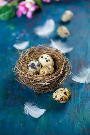 huevos de codorniz y plumas blancas en un fondo azul