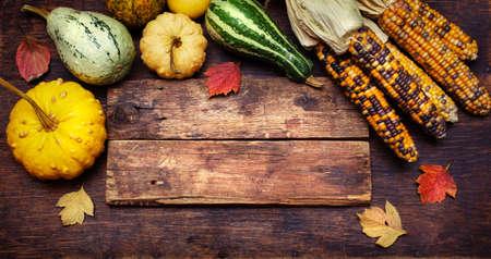 maiz: El maíz y calabazas en una tabla de madera con copyspace. Concepto del día de Acción de Gracias