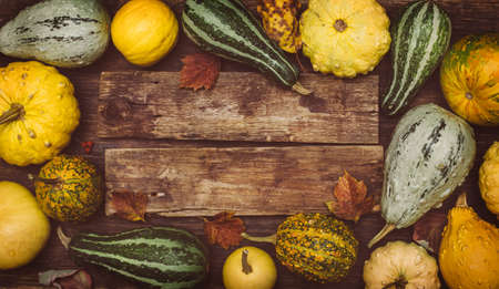 thanksgiving menu: Autumn background. Pumpkins on a wooden board with copyspace. Thanksgiving day concept Stock Photo