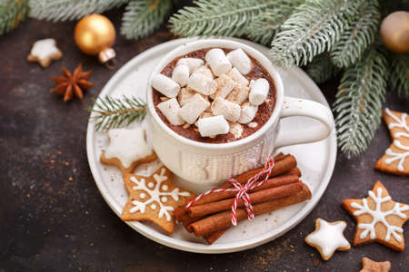 tastes: Cup of cocoa with marshmallows and cookies on table. Christmas Holiday background. Stock Photo