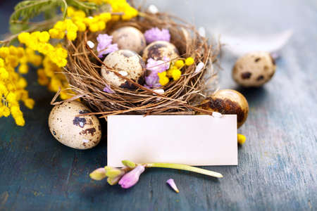 Easter eggs in the nest and blank card on a blue background. Selective focus. Place for text.