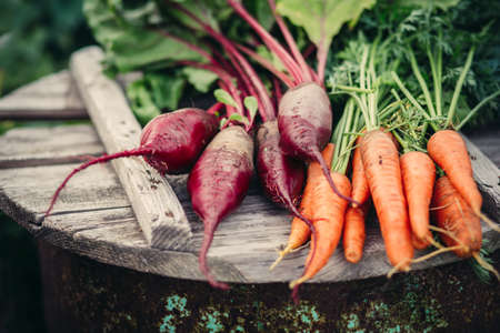 beets: Fresh vegetables, carrots and beets.  Healthy eating. Stock Photo