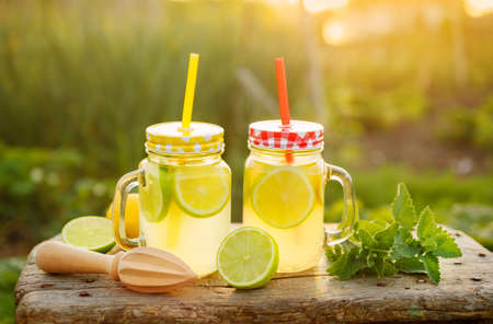 Citrus lemonade in garden setting, Refreshing summer drink with mint. Shallow depth of field Foto de archivo