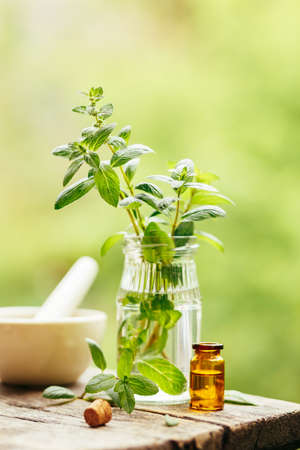 Peppermint and peppermint essential oil outdoors.