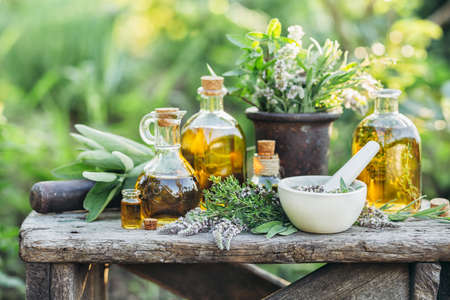 Fresh herbs and oils Stockfoto