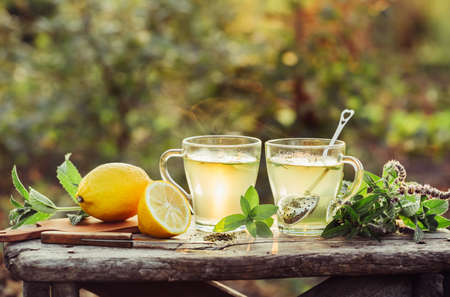 Two cups of hot tea. Glass Cups Tea with fresh mint and lemon. Outdoor. Stock Photo
