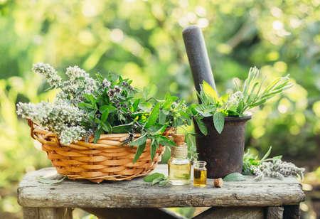 Różnorodność świeżych ziół i olejków do masażu i aromaterapii. Selektywna ostrość.