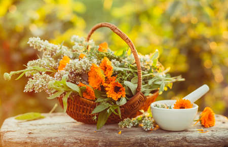 Fresh herbs from the garden in a basket and white mortar on a table Foto de archivo