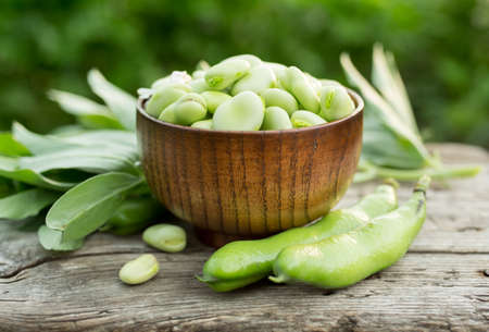 Broad beans or fava beans in a bowl. Organic diet and vegan food, Selective focus
