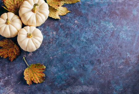 Autumn leaves and pumpkin over old background with copy space. Banner for your design