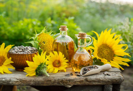 Natural Homemade sunflower oil with flowers and seeds on old table. Outdoors