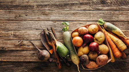 Fresh produce, potatoes, onions, beets, carrots. Healthy food background wiht copy space.
