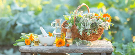 Spa composition with Fresh herbs, calendula and different types of oils.