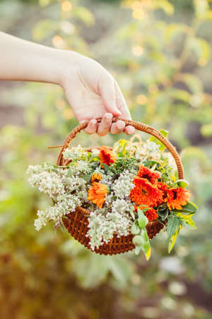 Womans hand holding a basket of flowers from the garden Stock Photo