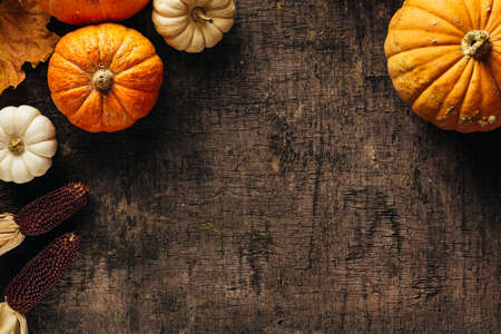 Pumpkins on a dark background. Banco de Imagens