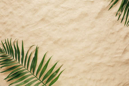 Tropical leaves on the sand, top view. Summer background with copy space and sand texture. Top view.